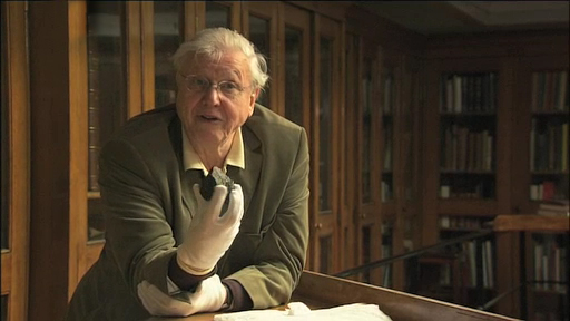 Sir David Attenborough holding the Olduvai Gorge cutting stone.