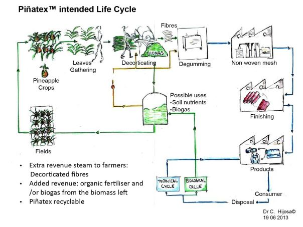 Download-the-Life-Cycle-Analysis