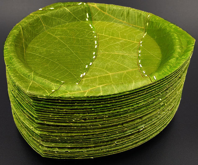 disposable-leaf-plates-640x533